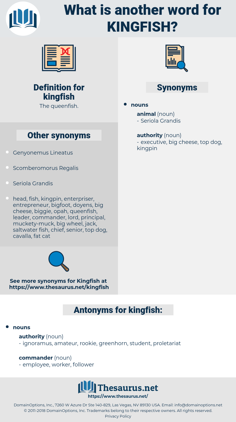 kingfish, synonym kingfish, another word for kingfish, words like kingfish, thesaurus kingfish