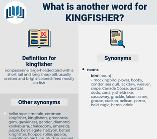 kingfisher, synonym kingfisher, another word for kingfisher, words like kingfisher, thesaurus kingfisher