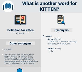 kitten, synonym kitten, another word for kitten, words like kitten, thesaurus kitten