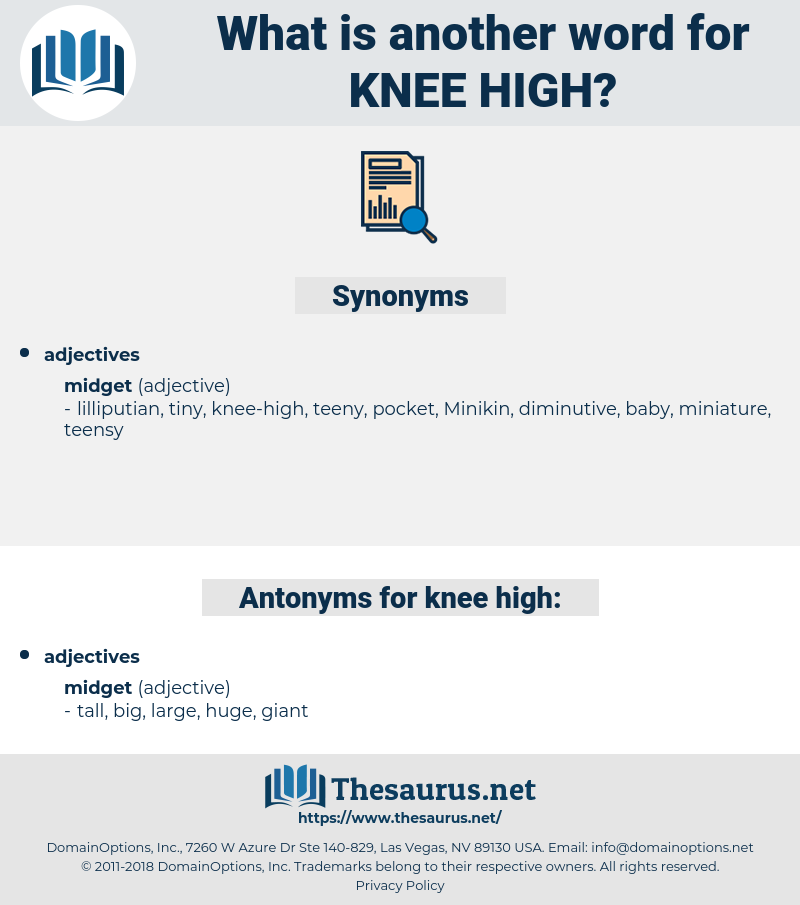 knee-high, synonym knee-high, another word for knee-high, words like knee-high, thesaurus knee-high