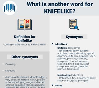 knifelike, synonym knifelike, another word for knifelike, words like knifelike, thesaurus knifelike