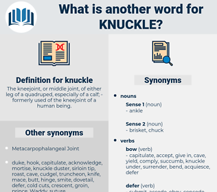 knuckle, synonym knuckle, another word for knuckle, words like knuckle, thesaurus knuckle