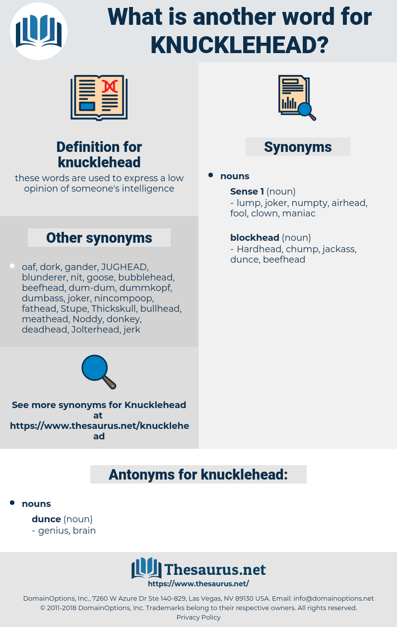 knucklehead, synonym knucklehead, another word for knucklehead, words like knucklehead, thesaurus knucklehead