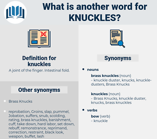 knuckles, synonym knuckles, another word for knuckles, words like knuckles, thesaurus knuckles