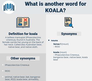 koala, synonym koala, another word for koala, words like koala, thesaurus koala