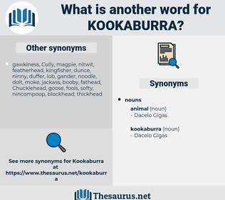 kookaburra, synonym kookaburra, another word for kookaburra, words like kookaburra, thesaurus kookaburra