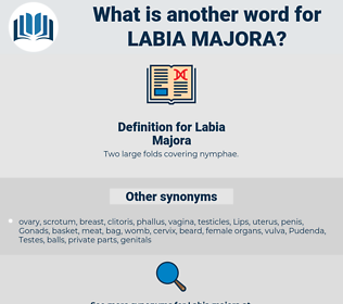 Labia Majora, synonym Labia Majora, another word for Labia Majora, words like Labia Majora, thesaurus Labia Majora