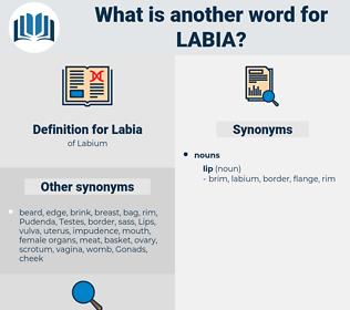 Labia, synonym Labia, another word for Labia, words like Labia, thesaurus Labia