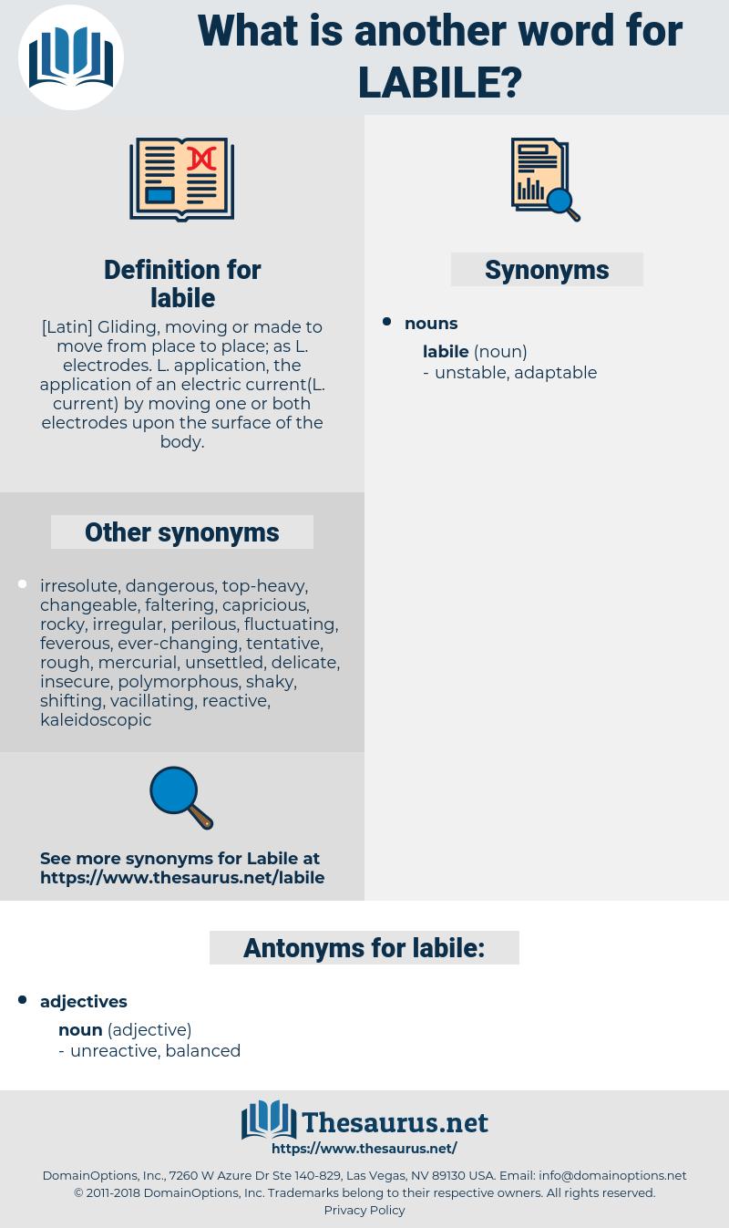 labile, synonym labile, another word for labile, words like labile, thesaurus labile