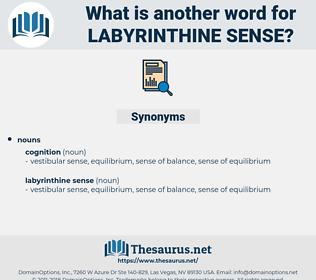 labyrinthine sense, synonym labyrinthine sense, another word for labyrinthine sense, words like labyrinthine sense, thesaurus labyrinthine sense