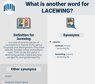 lacewing, synonym lacewing, another word for lacewing, words like lacewing, thesaurus lacewing