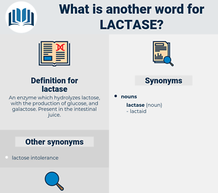 lactase, synonym lactase, another word for lactase, words like lactase, thesaurus lactase