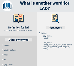 lad, synonym lad, another word for lad, words like lad, thesaurus lad