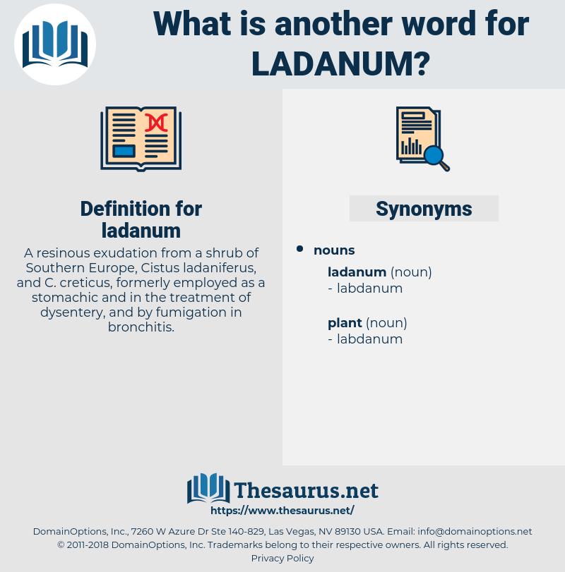 ladanum, synonym ladanum, another word for ladanum, words like ladanum, thesaurus ladanum