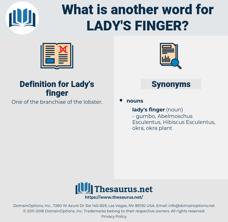 Lady's finger, synonym Lady's finger, another word for Lady's finger, words like Lady's finger, thesaurus Lady's finger