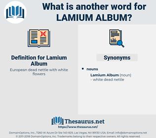 Lamium Album, synonym Lamium Album, another word for Lamium Album, words like Lamium Album, thesaurus Lamium Album