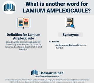 Lamium Amplexicaule, synonym Lamium Amplexicaule, another word for Lamium Amplexicaule, words like Lamium Amplexicaule, thesaurus Lamium Amplexicaule