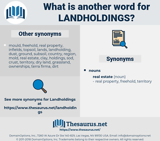 landholdings, synonym landholdings, another word for landholdings, words like landholdings, thesaurus landholdings