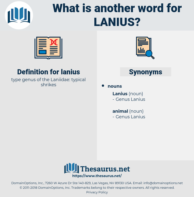 lanius, synonym lanius, another word for lanius, words like lanius, thesaurus lanius