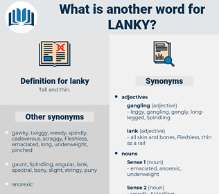 lanky, synonym lanky, another word for lanky, words like lanky, thesaurus lanky