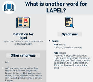 lapel, synonym lapel, another word for lapel, words like lapel, thesaurus lapel