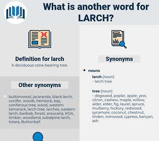 larch, synonym larch, another word for larch, words like larch, thesaurus larch