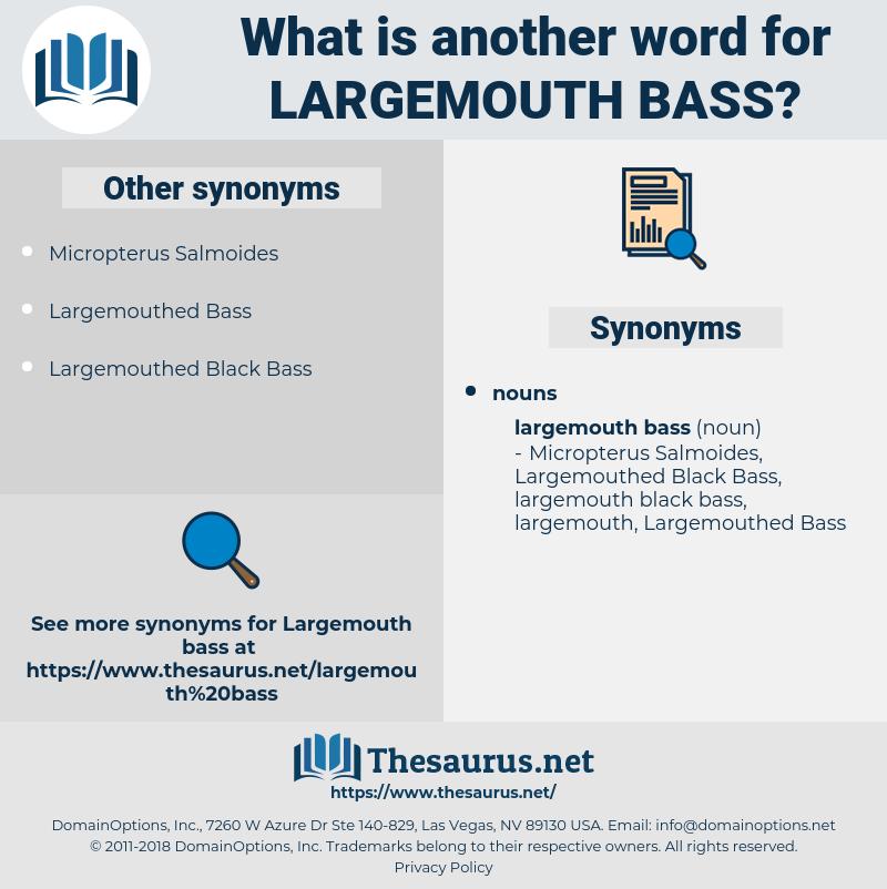 largemouth bass, synonym largemouth bass, another word for largemouth bass, words like largemouth bass, thesaurus largemouth bass