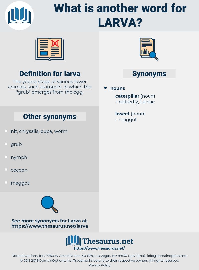 larva, synonym larva, another word for larva, words like larva, thesaurus larva