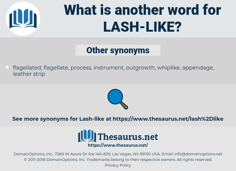 lash-like, synonym lash-like, another word for lash-like, words like lash-like, thesaurus lash-like
