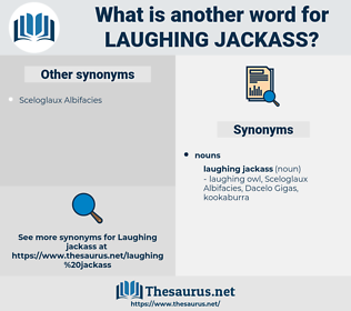 laughing jackass, synonym laughing jackass, another word for laughing jackass, words like laughing jackass, thesaurus laughing jackass