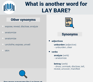 lay bare, synonym lay bare, another word for lay bare, words like lay bare, thesaurus lay bare