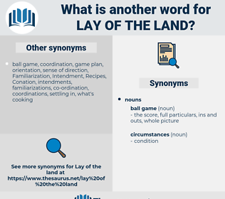 lay of the land, synonym lay of the land, another word for lay of the land, words like lay of the land, thesaurus lay of the land
