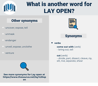 lay open, synonym lay open, another word for lay open, words like lay open, thesaurus lay open
