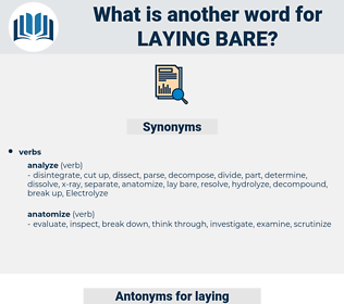laying bare, synonym laying bare, another word for laying bare, words like laying bare, thesaurus laying bare