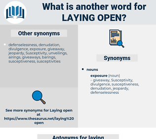 laying open, synonym laying open, another word for laying open, words like laying open, thesaurus laying open