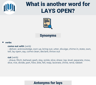 lays open, synonym lays open, another word for lays open, words like lays open, thesaurus lays open