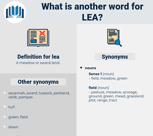 lea, synonym lea, another word for lea, words like lea, thesaurus lea