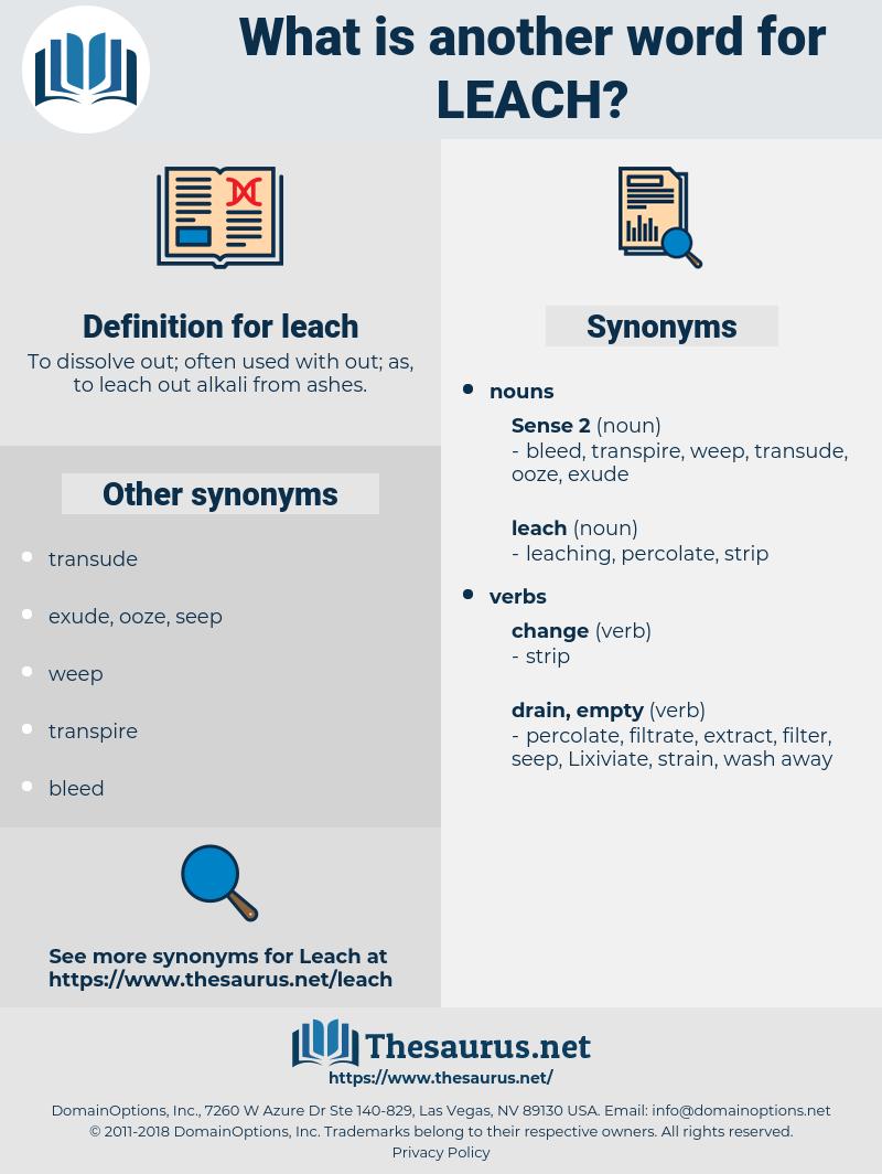 leach, synonym leach, another word for leach, words like leach, thesaurus leach