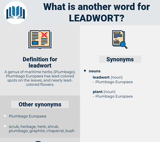 leadwort, synonym leadwort, another word for leadwort, words like leadwort, thesaurus leadwort