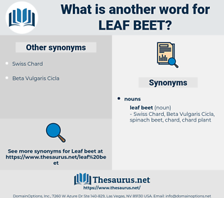 leaf beet, synonym leaf beet, another word for leaf beet, words like leaf beet, thesaurus leaf beet