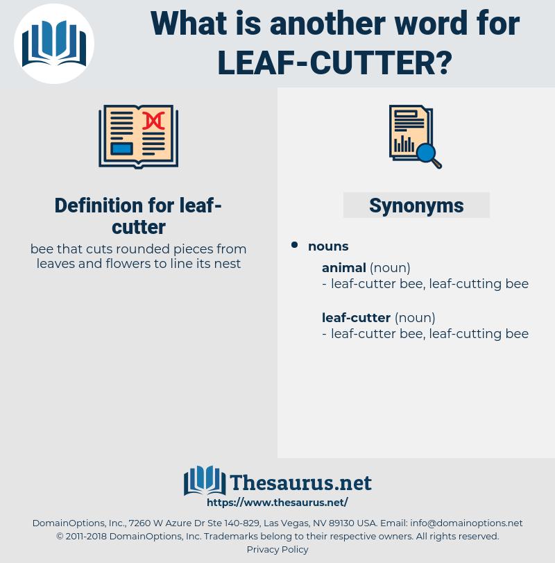 leaf-cutter, synonym leaf-cutter, another word for leaf-cutter, words like leaf-cutter, thesaurus leaf-cutter