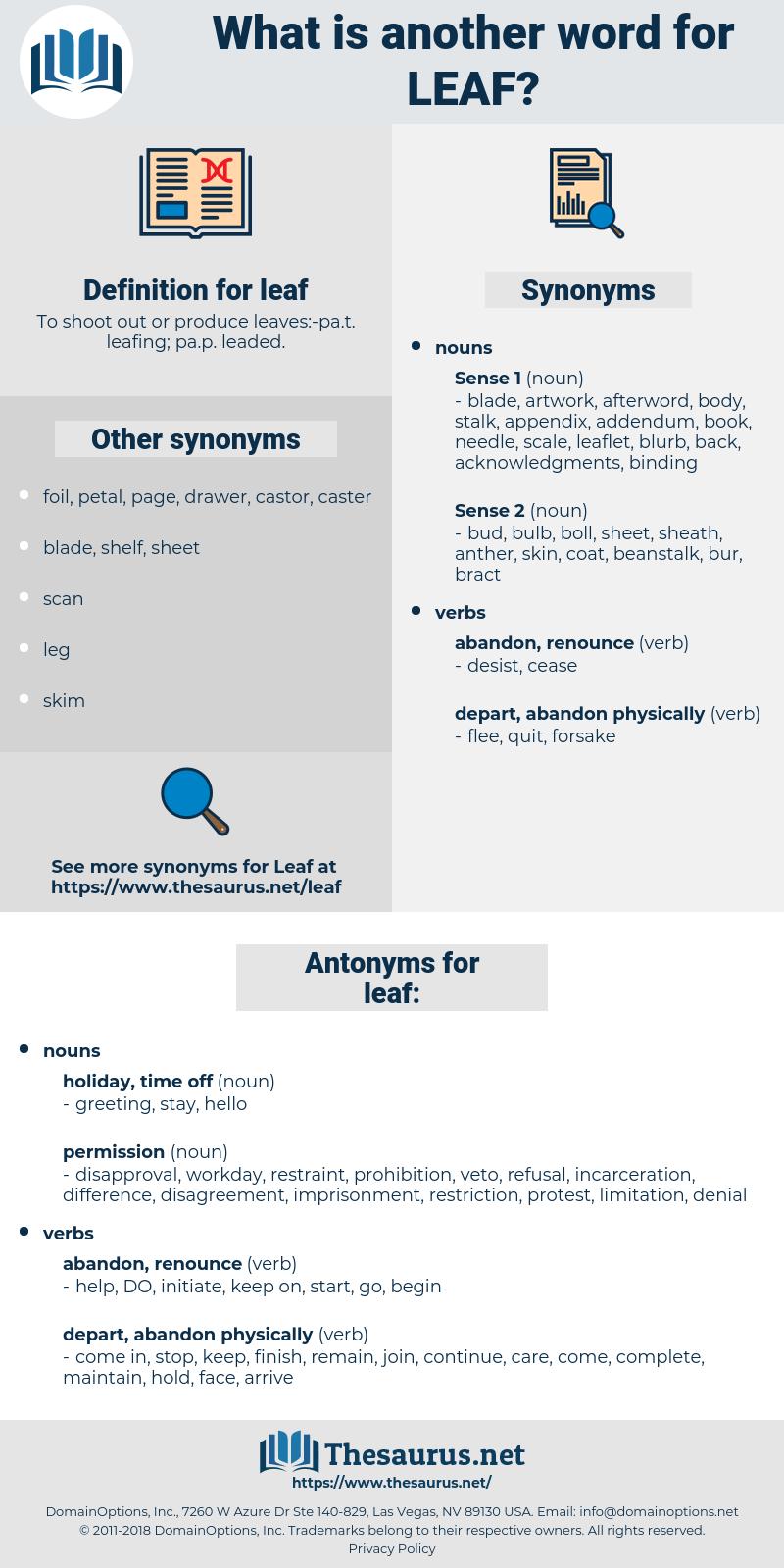 leaf, synonym leaf, another word for leaf, words like leaf, thesaurus leaf