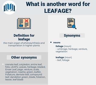leafage, synonym leafage, another word for leafage, words like leafage, thesaurus leafage