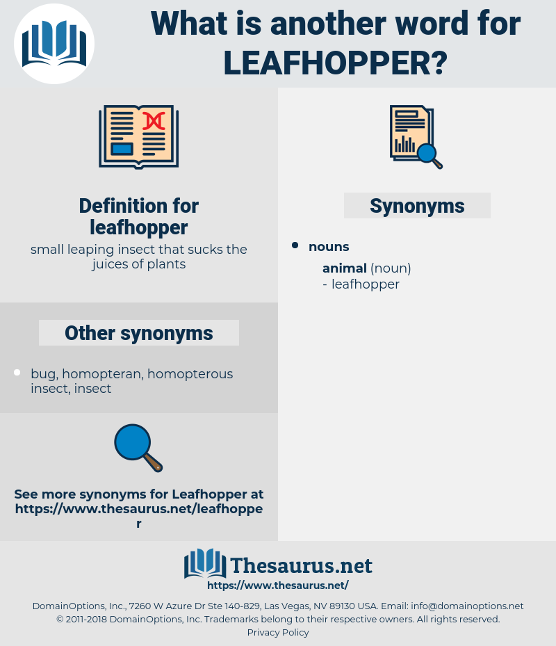 leafhopper, synonym leafhopper, another word for leafhopper, words like leafhopper, thesaurus leafhopper