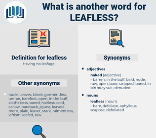 leafless, synonym leafless, another word for leafless, words like leafless, thesaurus leafless