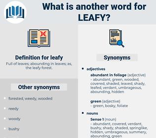 leafy, synonym leafy, another word for leafy, words like leafy, thesaurus leafy