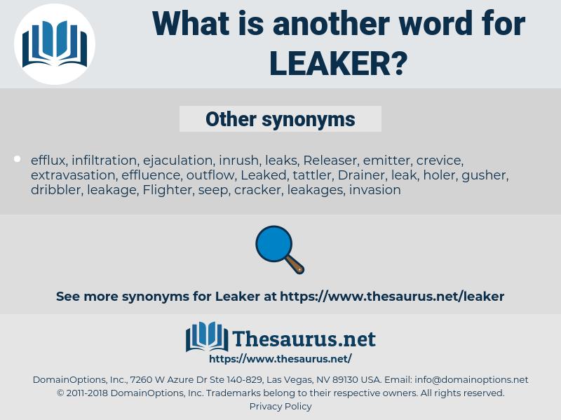 leaker, synonym leaker, another word for leaker, words like leaker, thesaurus leaker