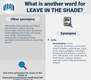 leave in the shade, synonym leave in the shade, another word for leave in the shade, words like leave in the shade, thesaurus leave in the shade