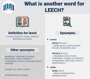 leech, synonym leech, another word for leech, words like leech, thesaurus leech
