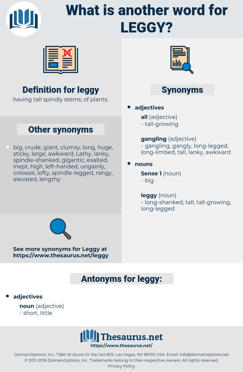 leggy, synonym leggy, another word for leggy, words like leggy, thesaurus leggy